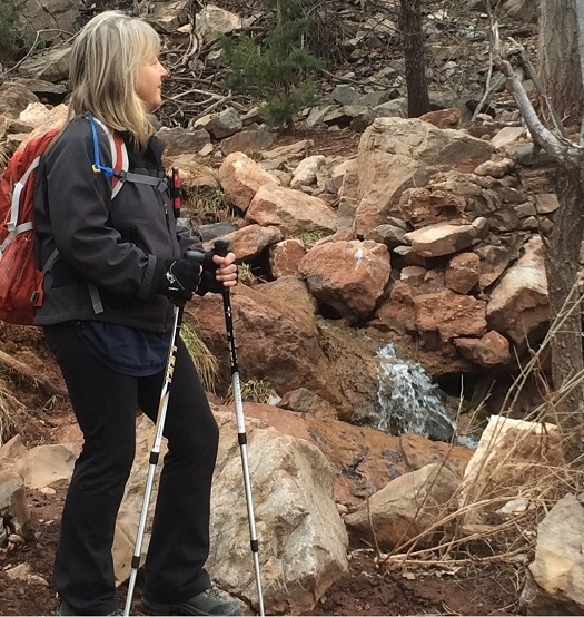 health benefits of trekking or hiking poles