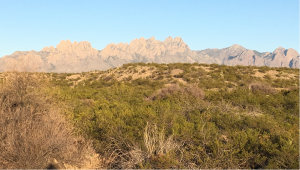 Organ Mountains in Las Cruces