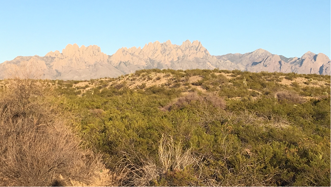 The foothills in the Organ Mountains.